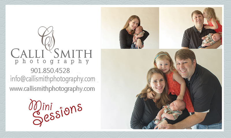 family, children, mini sessions, professional photography