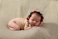 PArrowood_September2014_Children_Newborn016